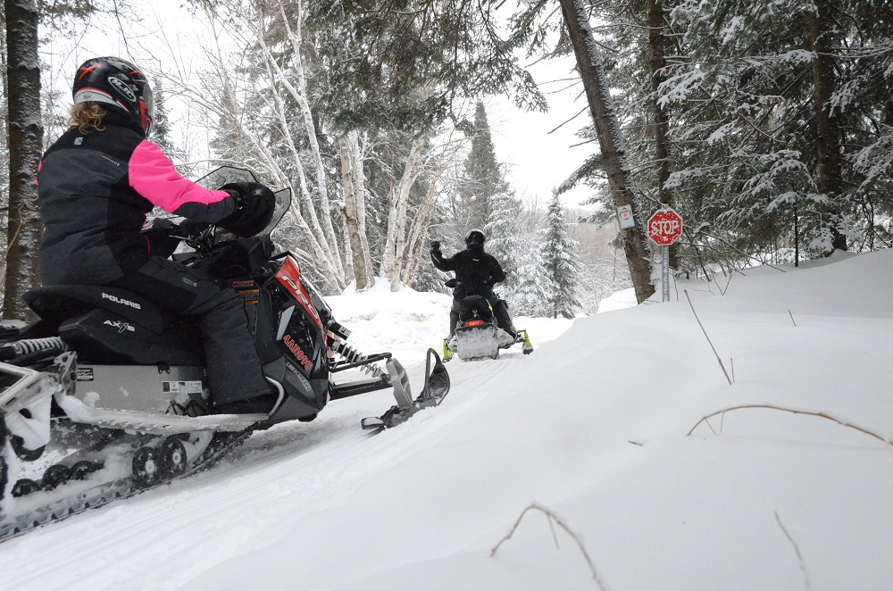 two snowmobilers riding in snowy forest