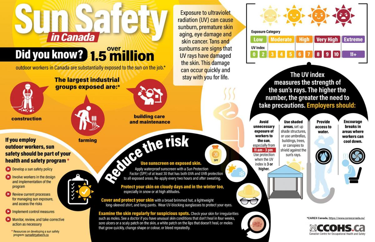 Infographic showing how to work safely in the sun